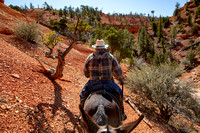 Bryce Canyon Mule Days 2019
