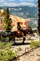 Bryce Canyon Mule Days 2020